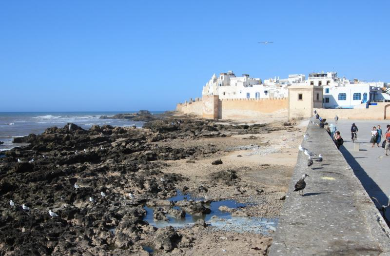 organisation de voyages incentive à Essaouira par Preference Events